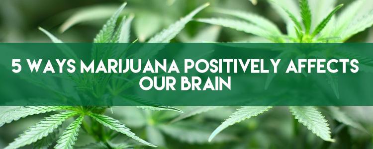 5 ways marijuana positively affects our brain
